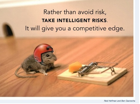 Take intelligent risks (Mouse, Cheese & HELMET)